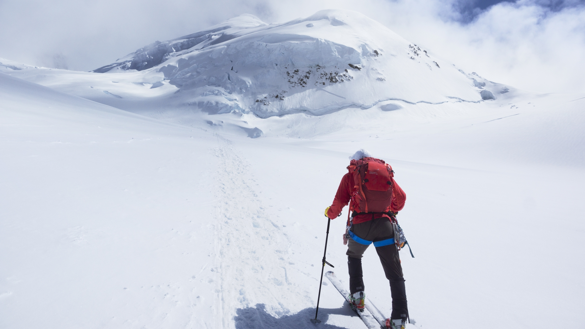 Person cross-country skiing in the snow at Denali National Park