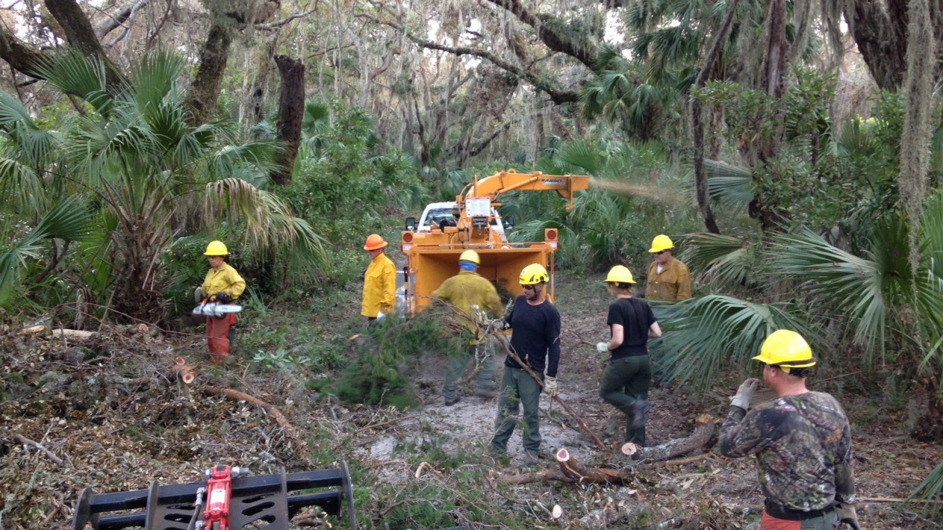 Hurricane cleanup at Cumberland Island NS