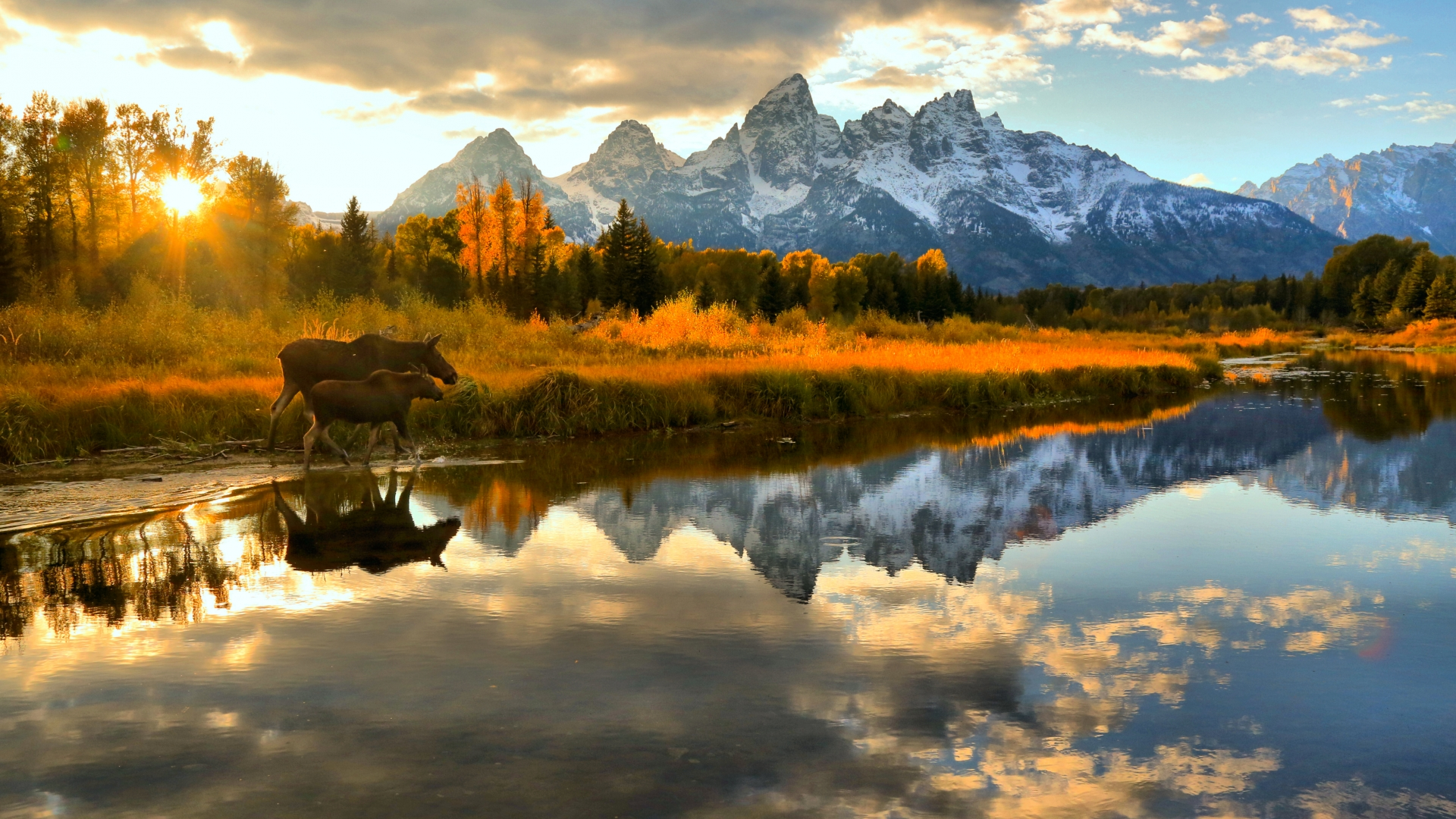 Grand Teton National Park contest image by Adam Jewell