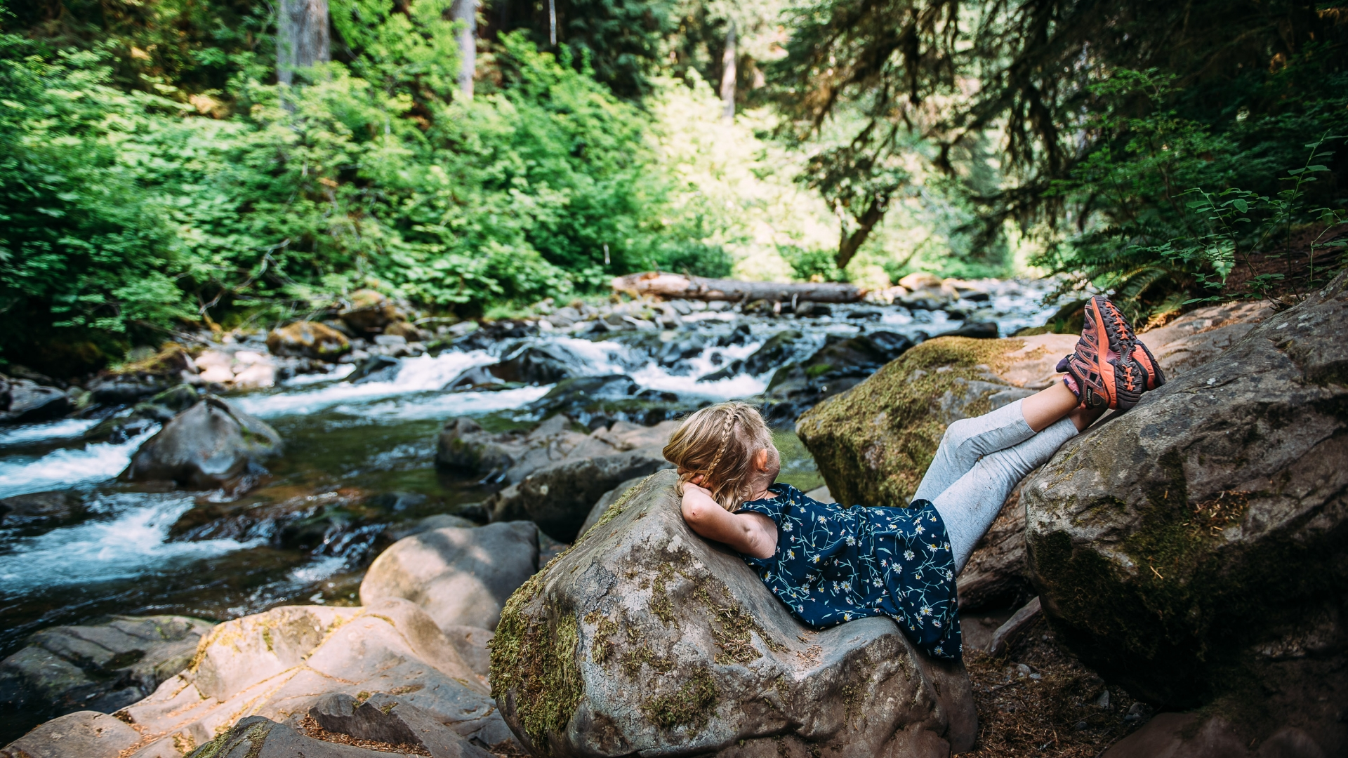 Olympic National Park contest image by Ashley Kerkemeyer