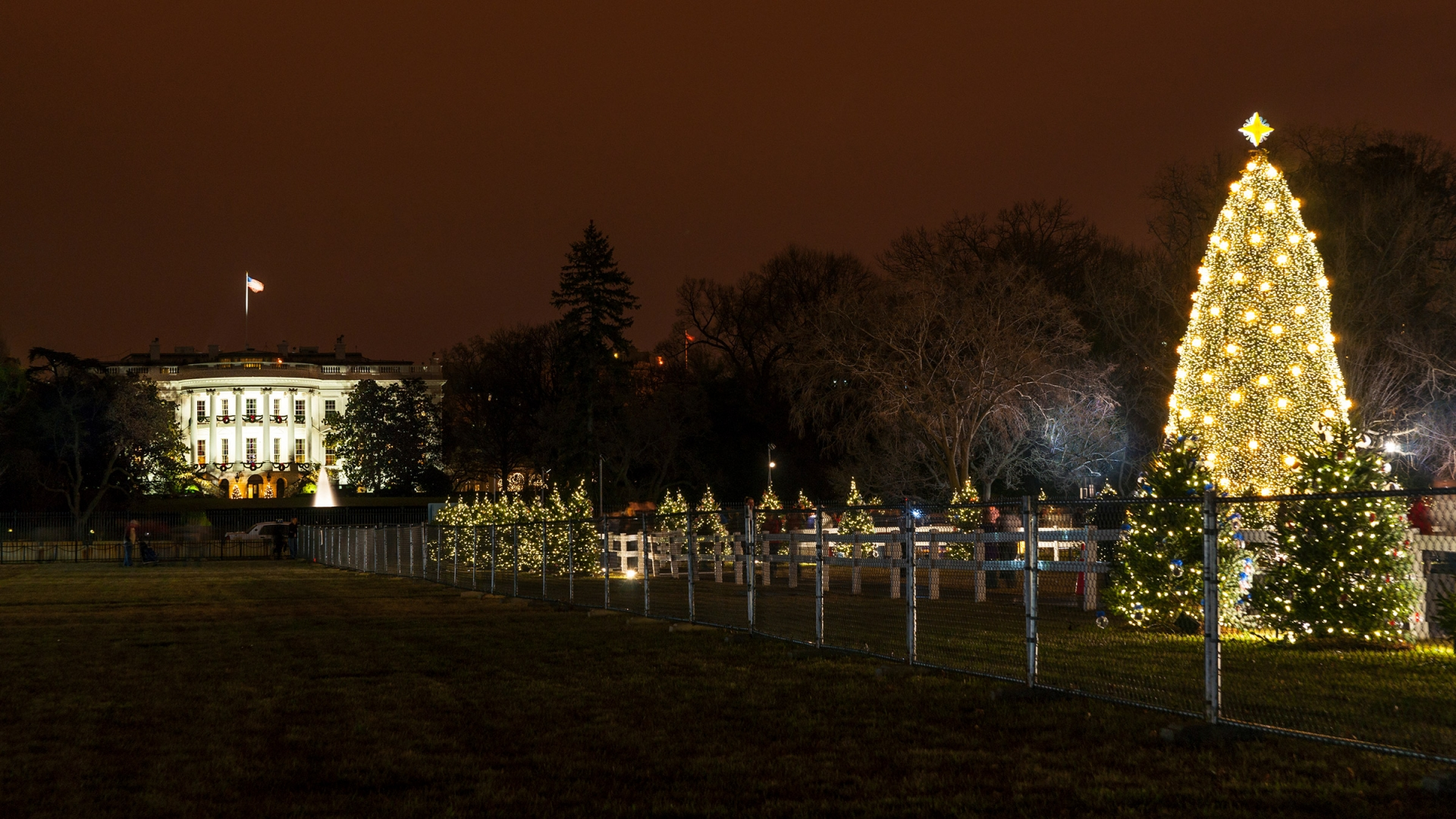 The White House And President's Park National Park Foundation - Visiting The National Christmas Tree