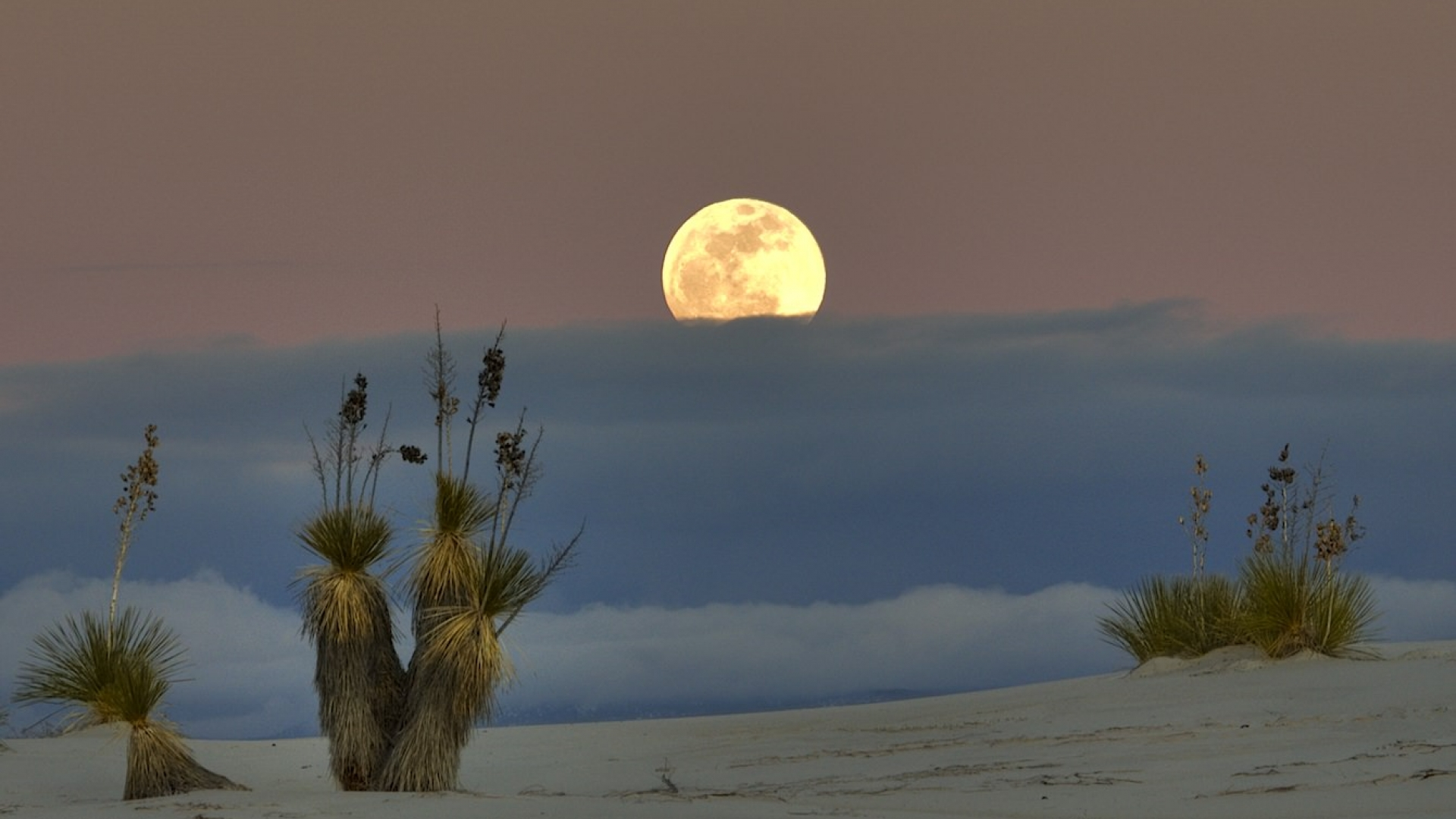 The moonrise over White Sands National Monument