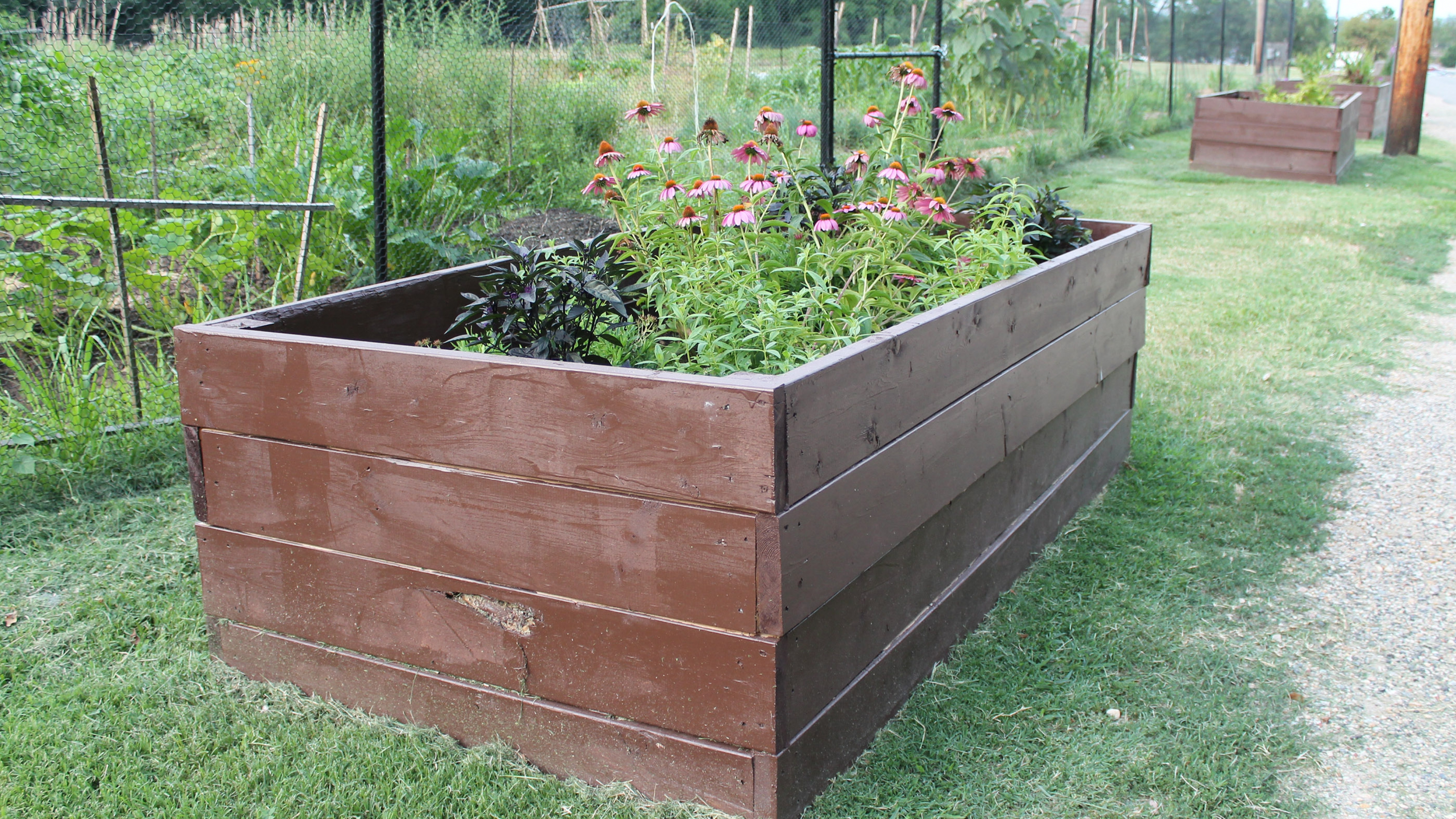 Garden planter in Rock Creek Park