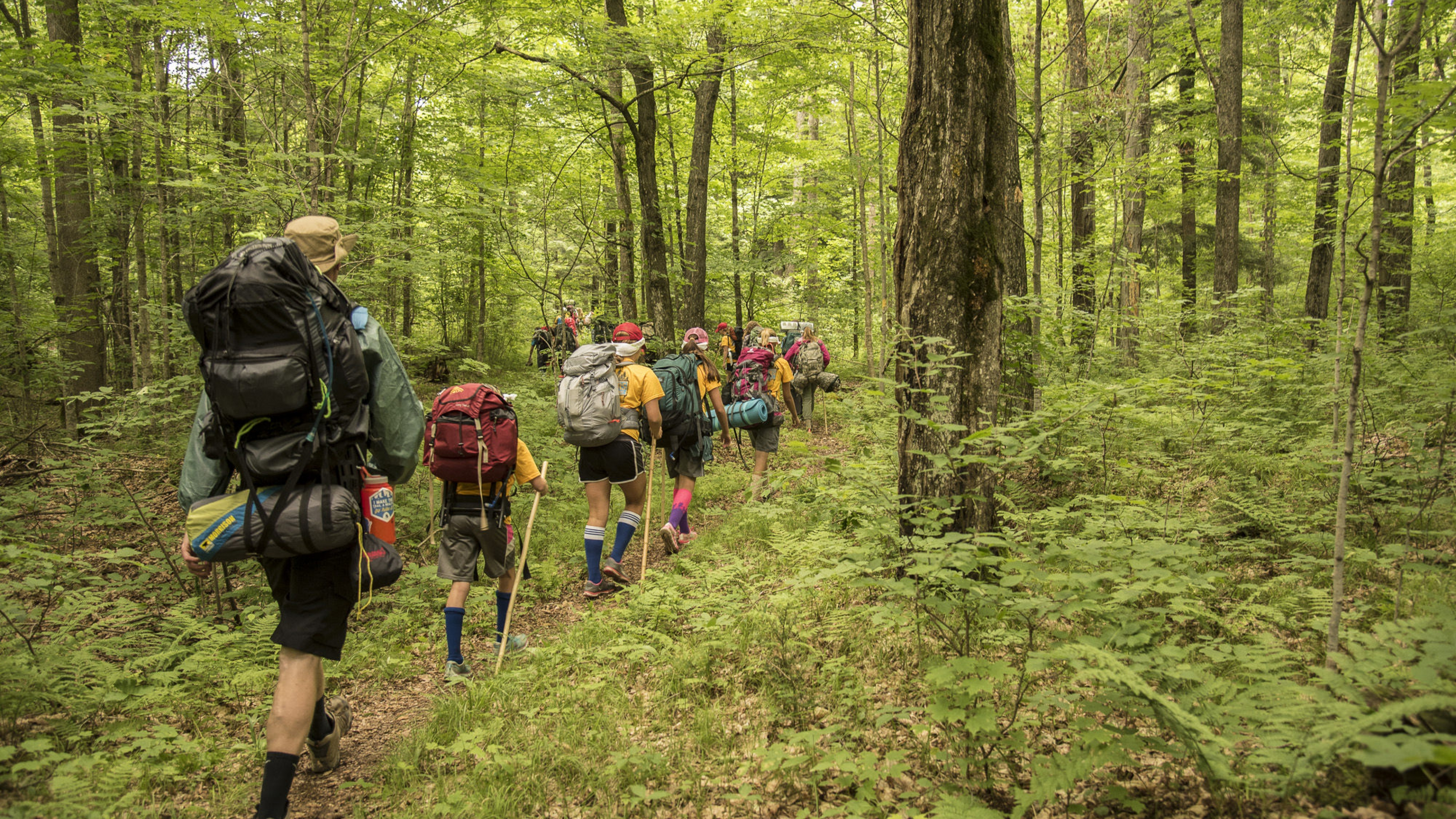 Group of youth hiking in a wooded forest with backpacking gear