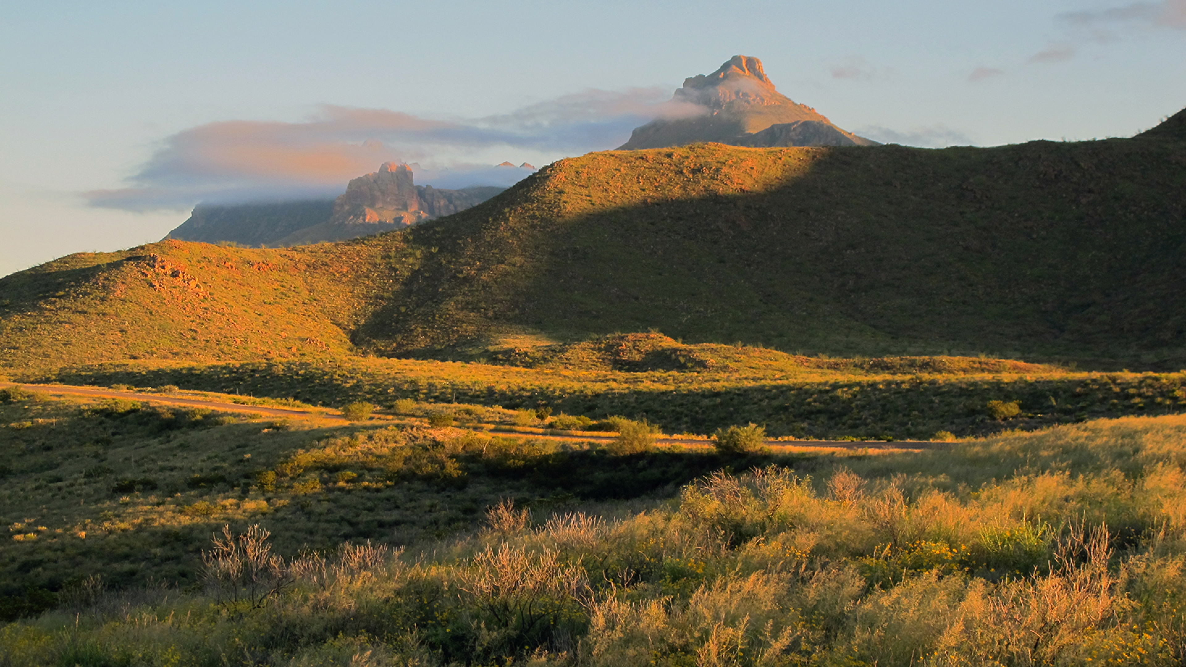Afternoon Light Across the Chisos Mountains