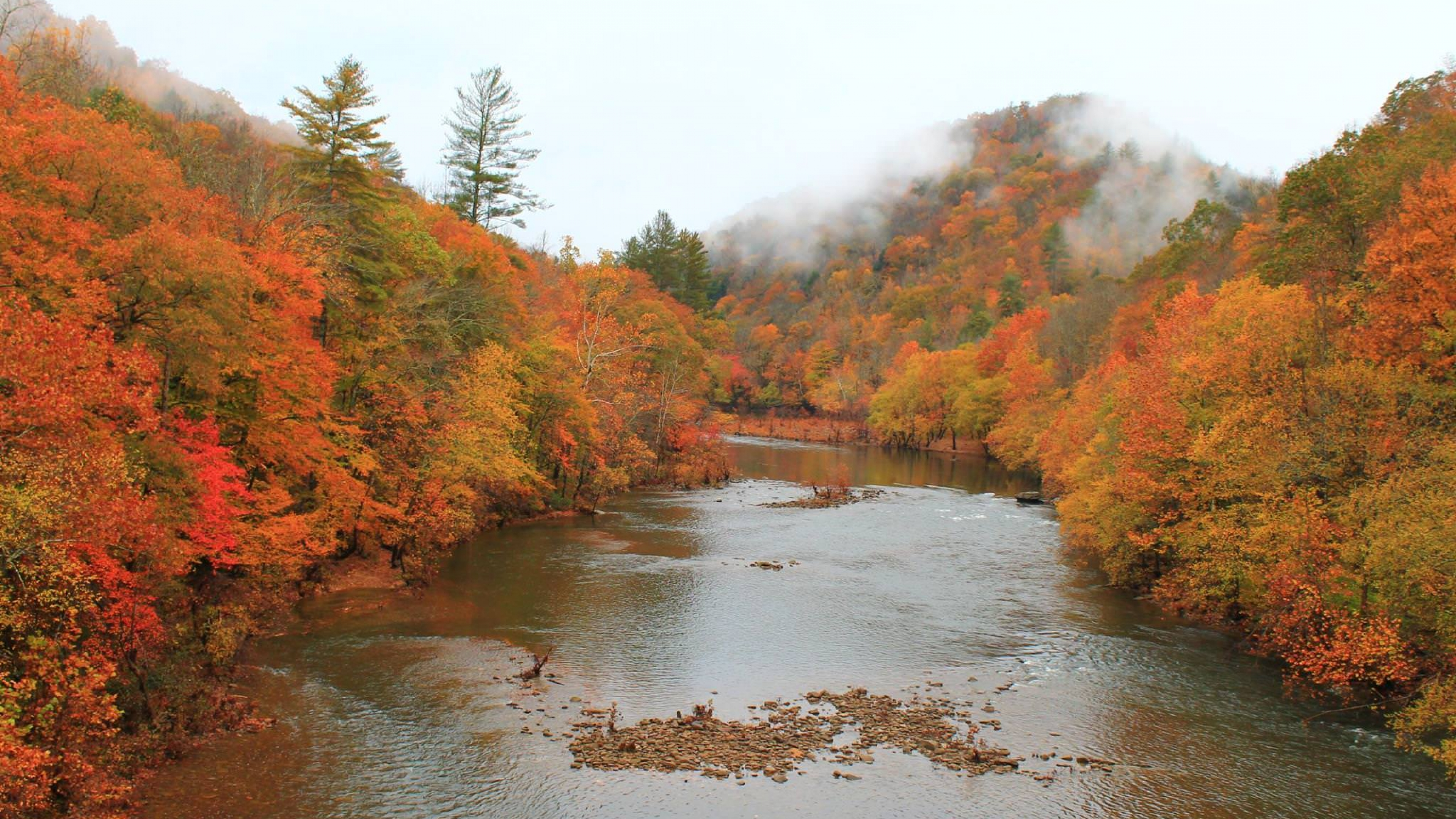 The red, orange, yellow, and green fall foliage surrounding the river at Big South Fork National River and Recreation Area