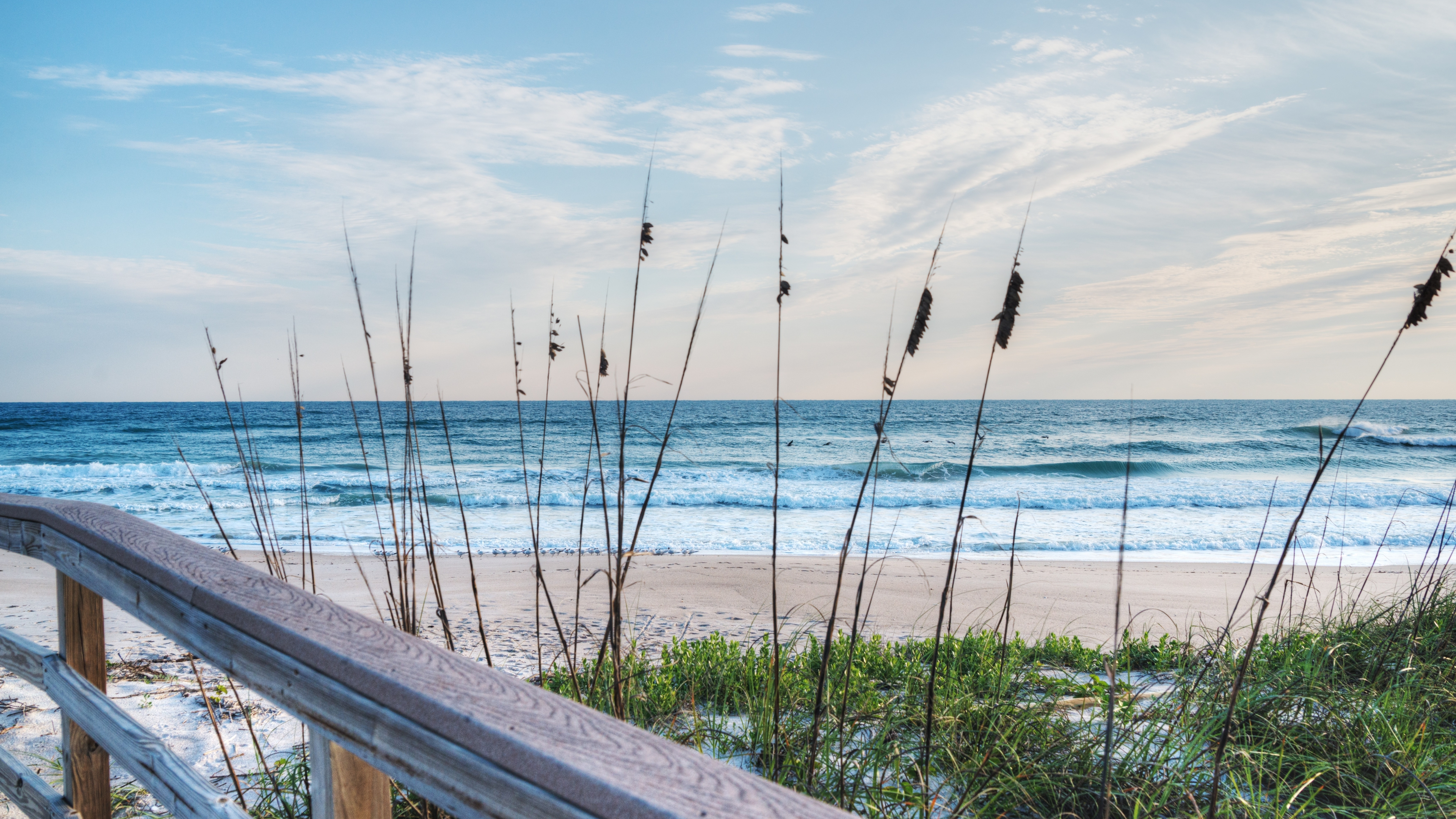 View of the Canaveral National Seashore during sunrise from a nearby boardwalk.