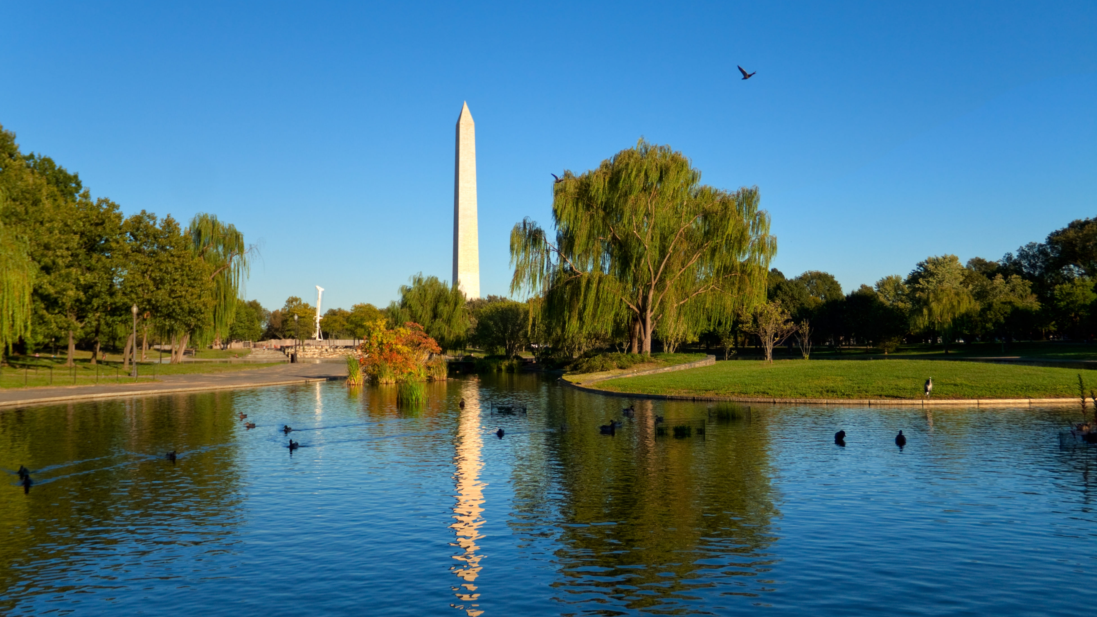 Constitution Gardens on the National Mall
