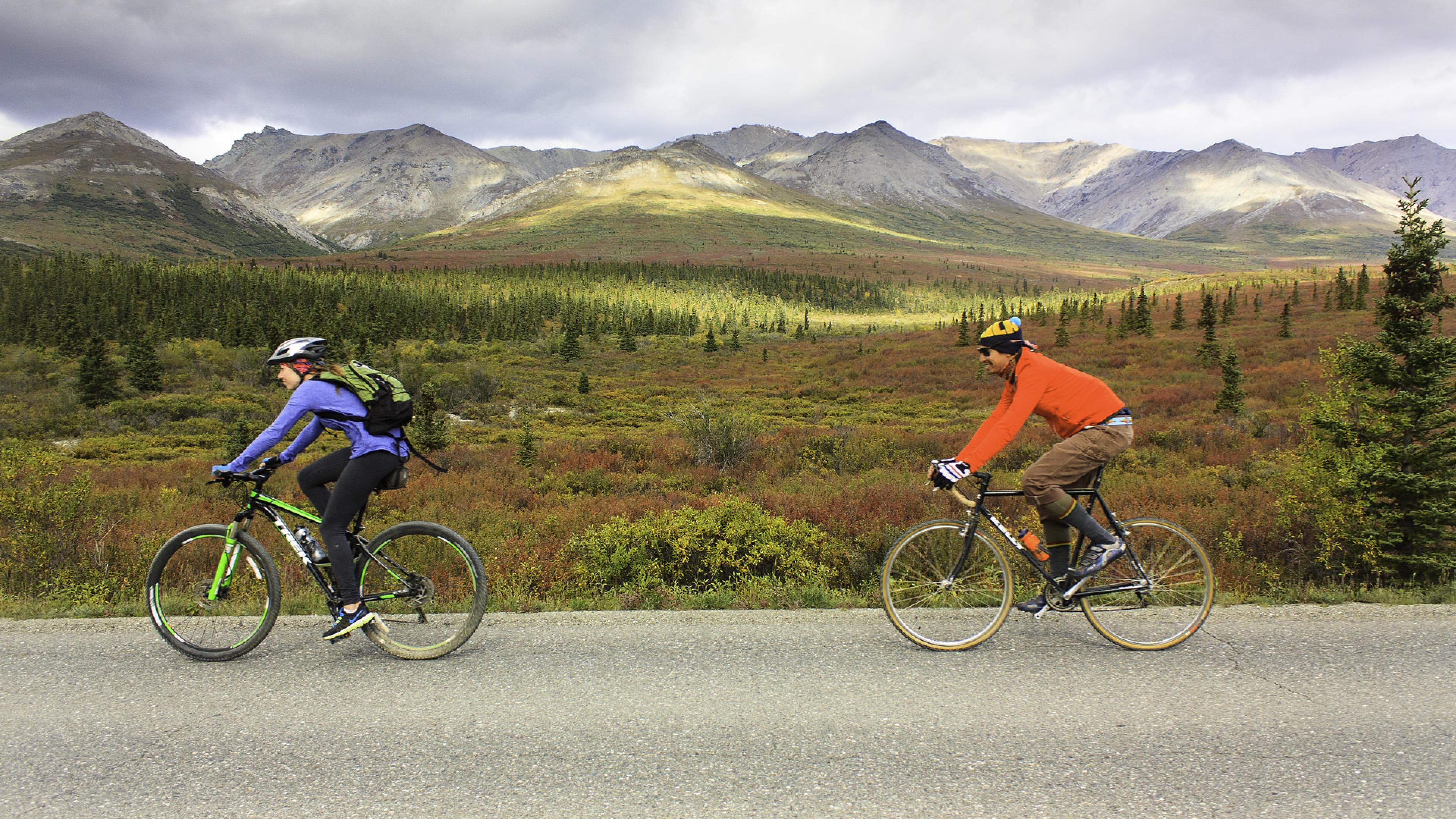 Two bikers ride along a paved road through Denali National Park & Preserve on a fall afternoon