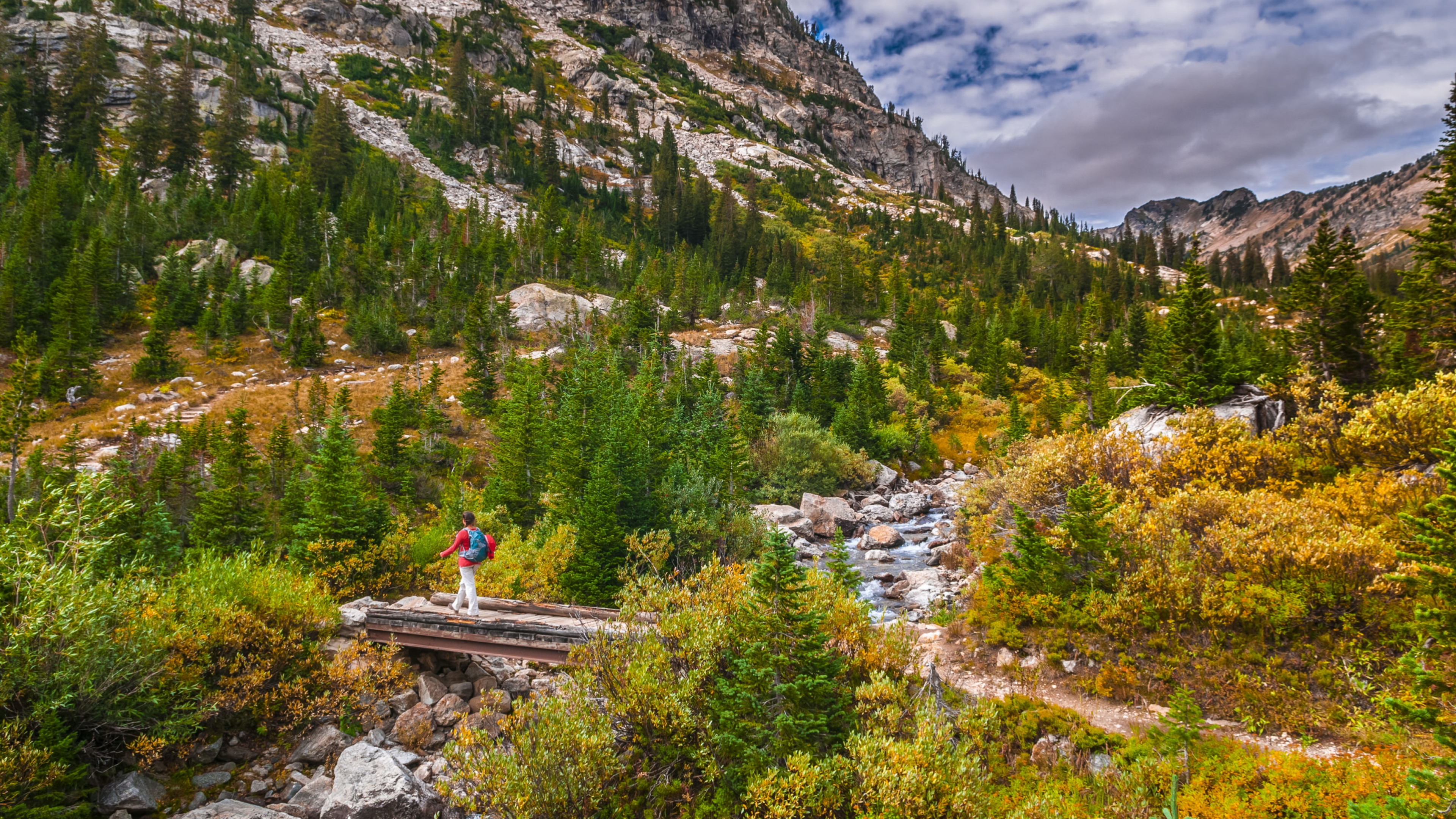 A person walking on a bridge over a river amongst the green and yellow trees in a valley at Grand Teton National Park