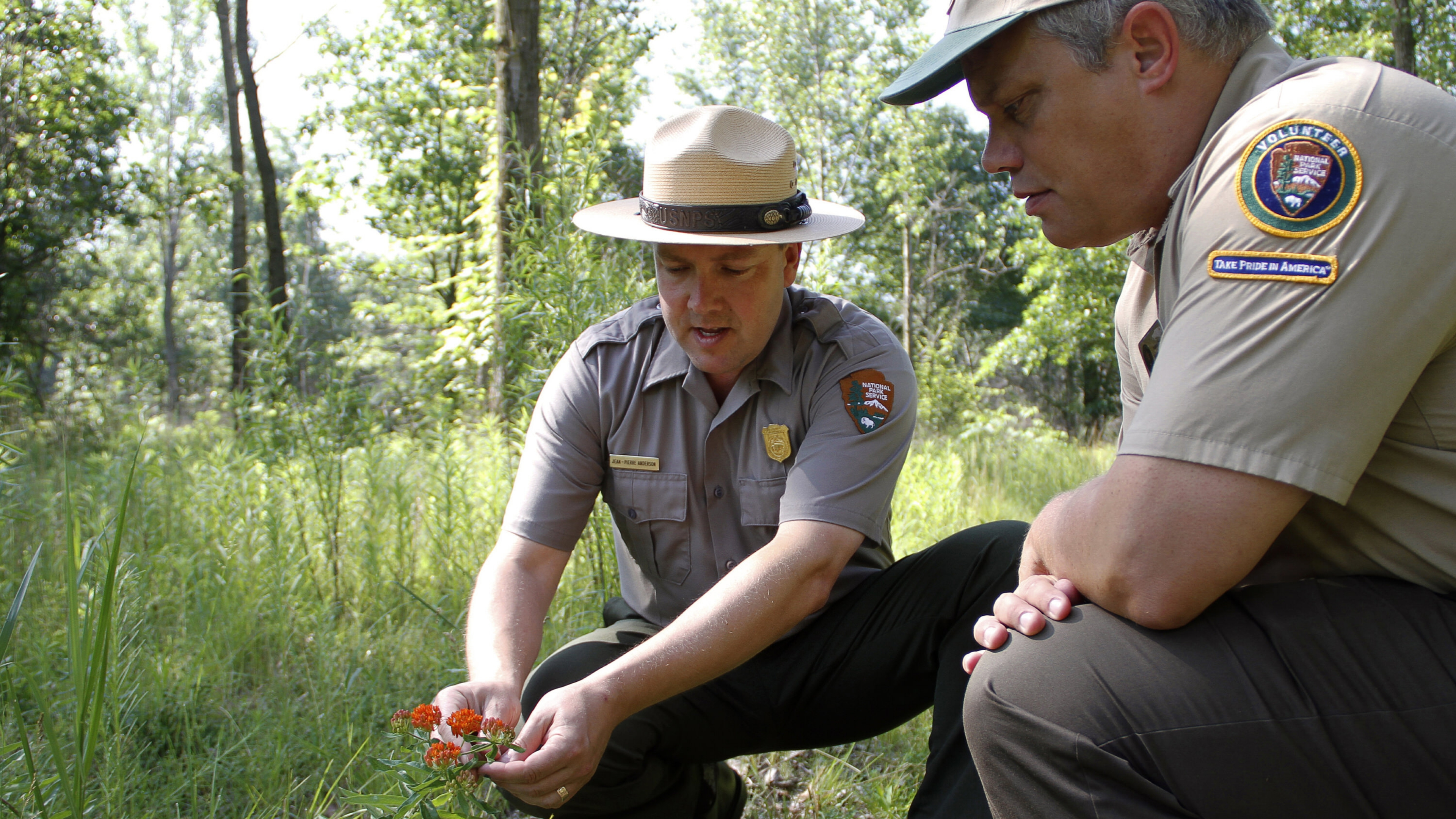 A park ranger and a volunteer squatting looking at a red flower at Indiana Dunes National Lakeshore