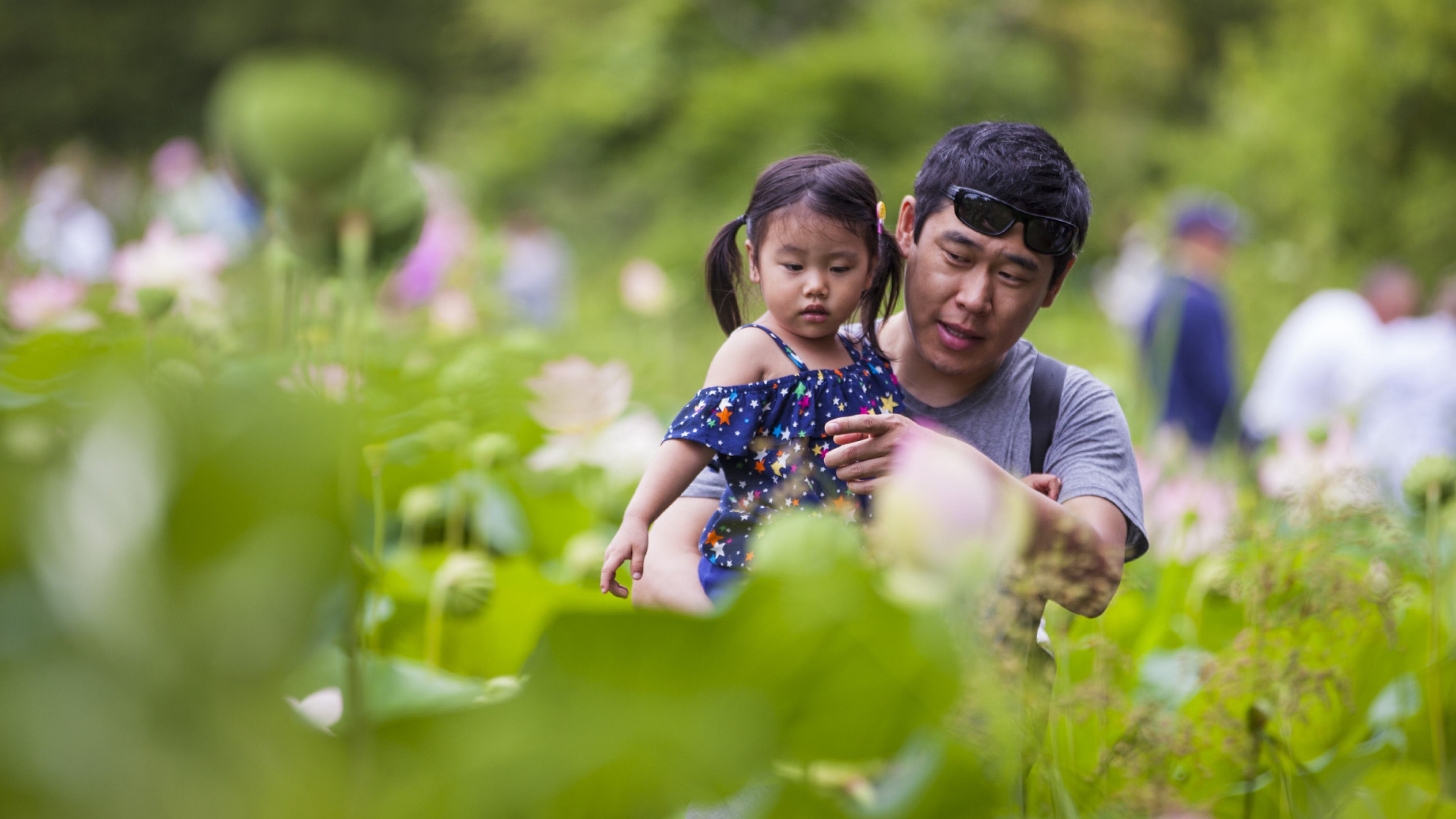 A man holds a little while while pointing at lotus flowers