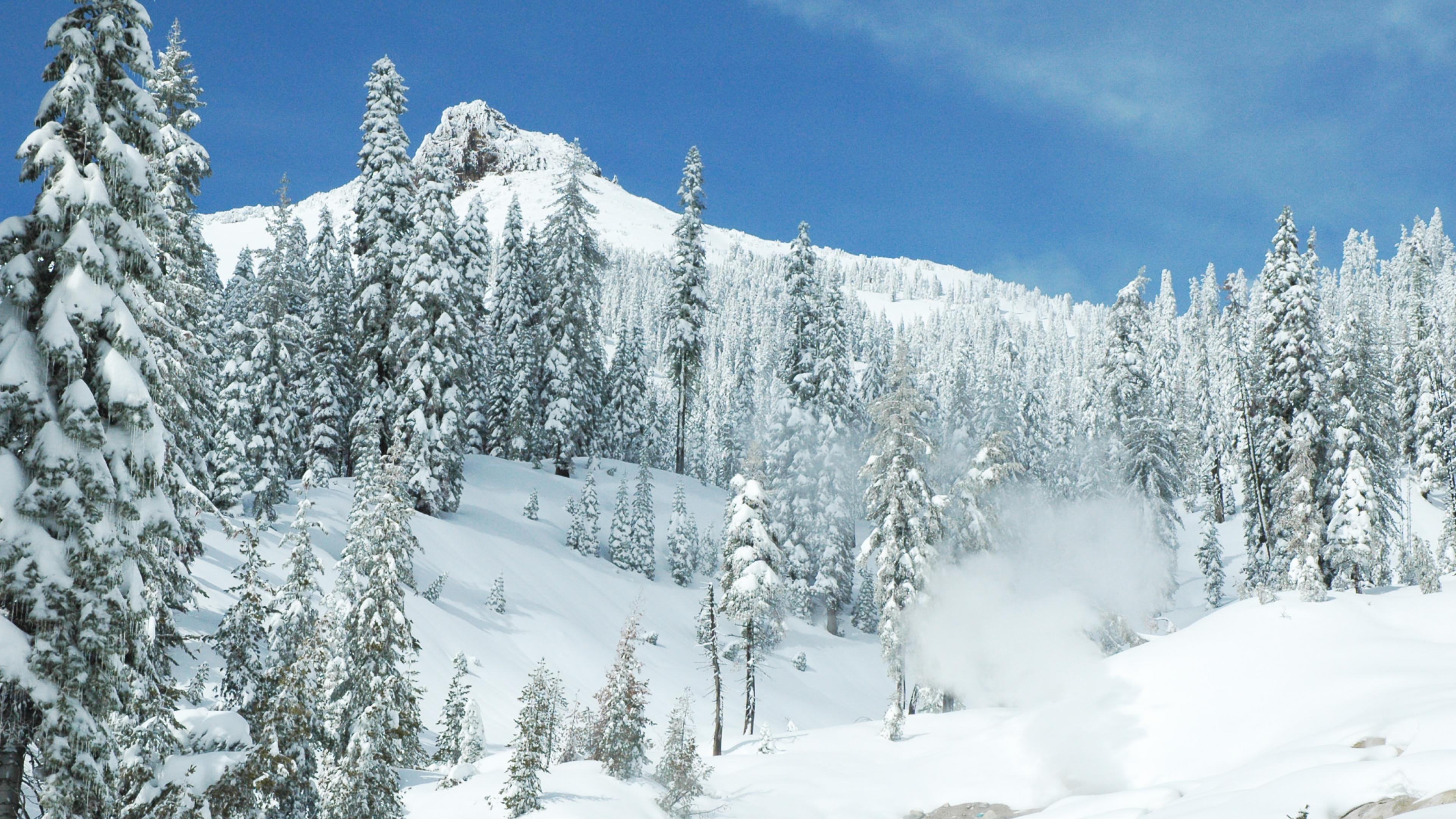 Snow-covered trees and mountain of Lassen Volcanic National Park