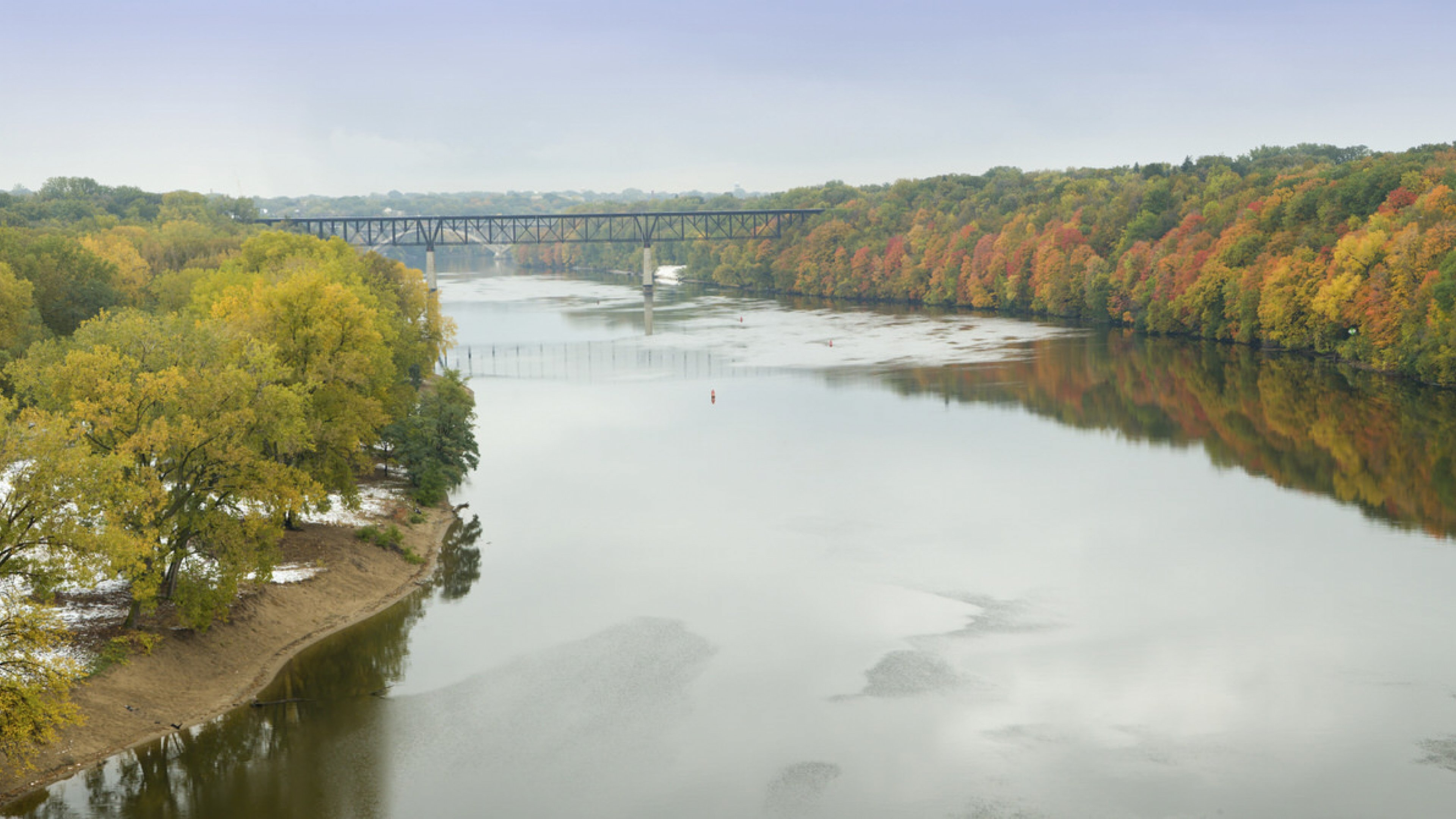 Some yellows and oranges of fall foliage in a green forest lining the banks of the Mississippi River with a bridge in the horizon