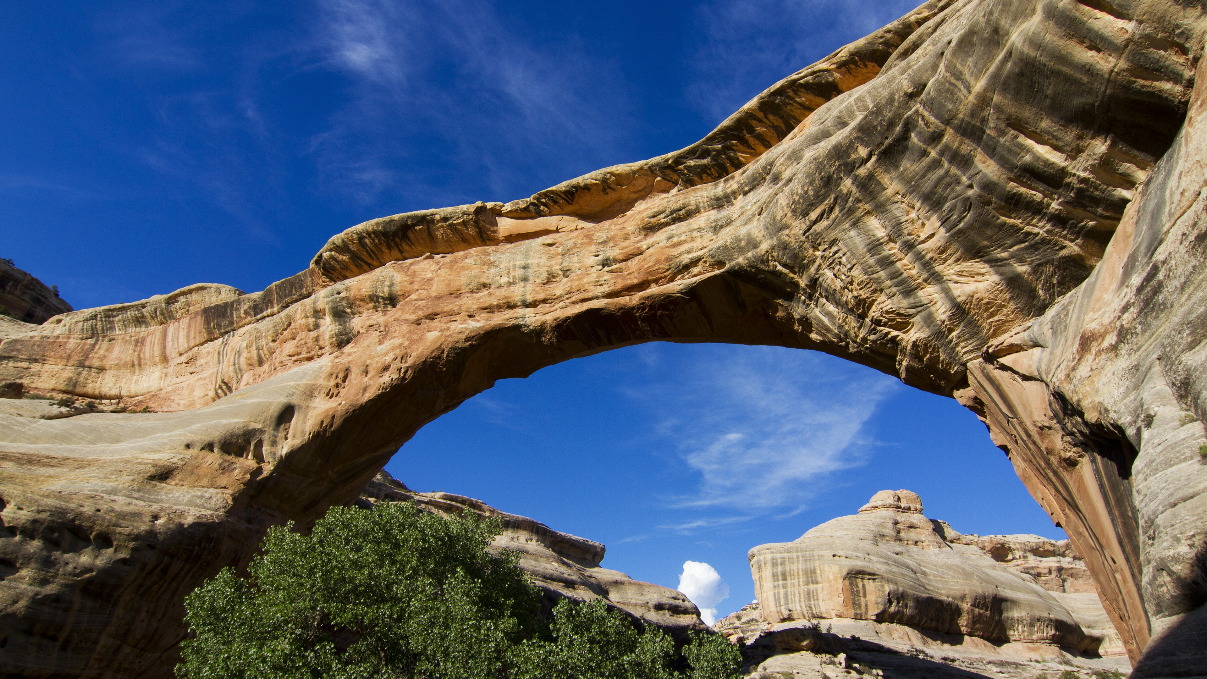The Power of Nature at Natural Bridges National Monument ...