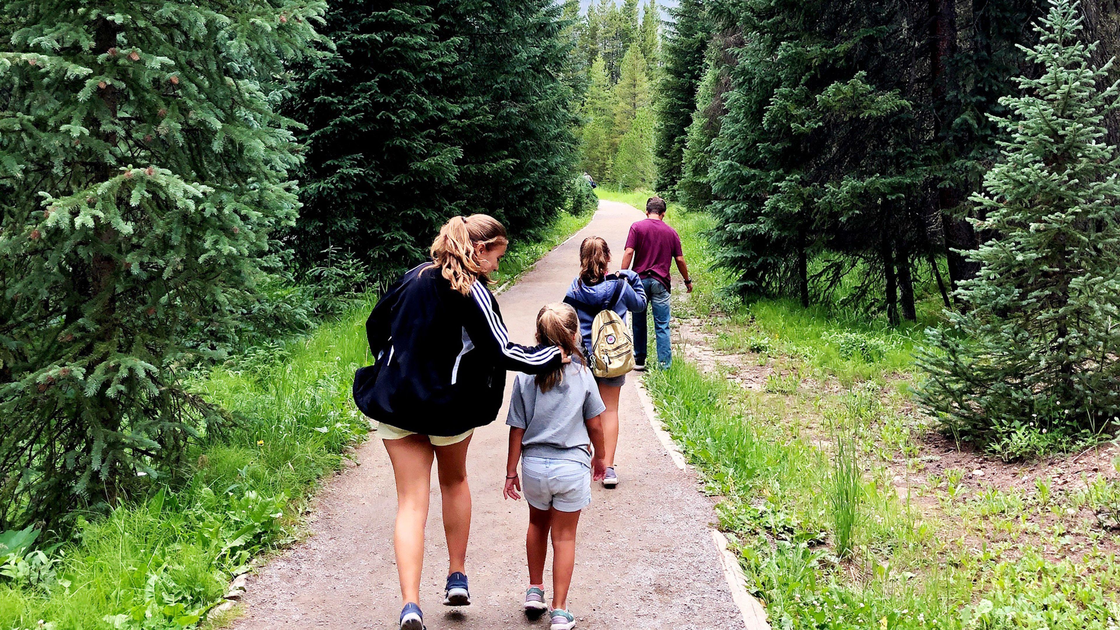 A family walks into the distance on a paved trail path lined with evergreen trees