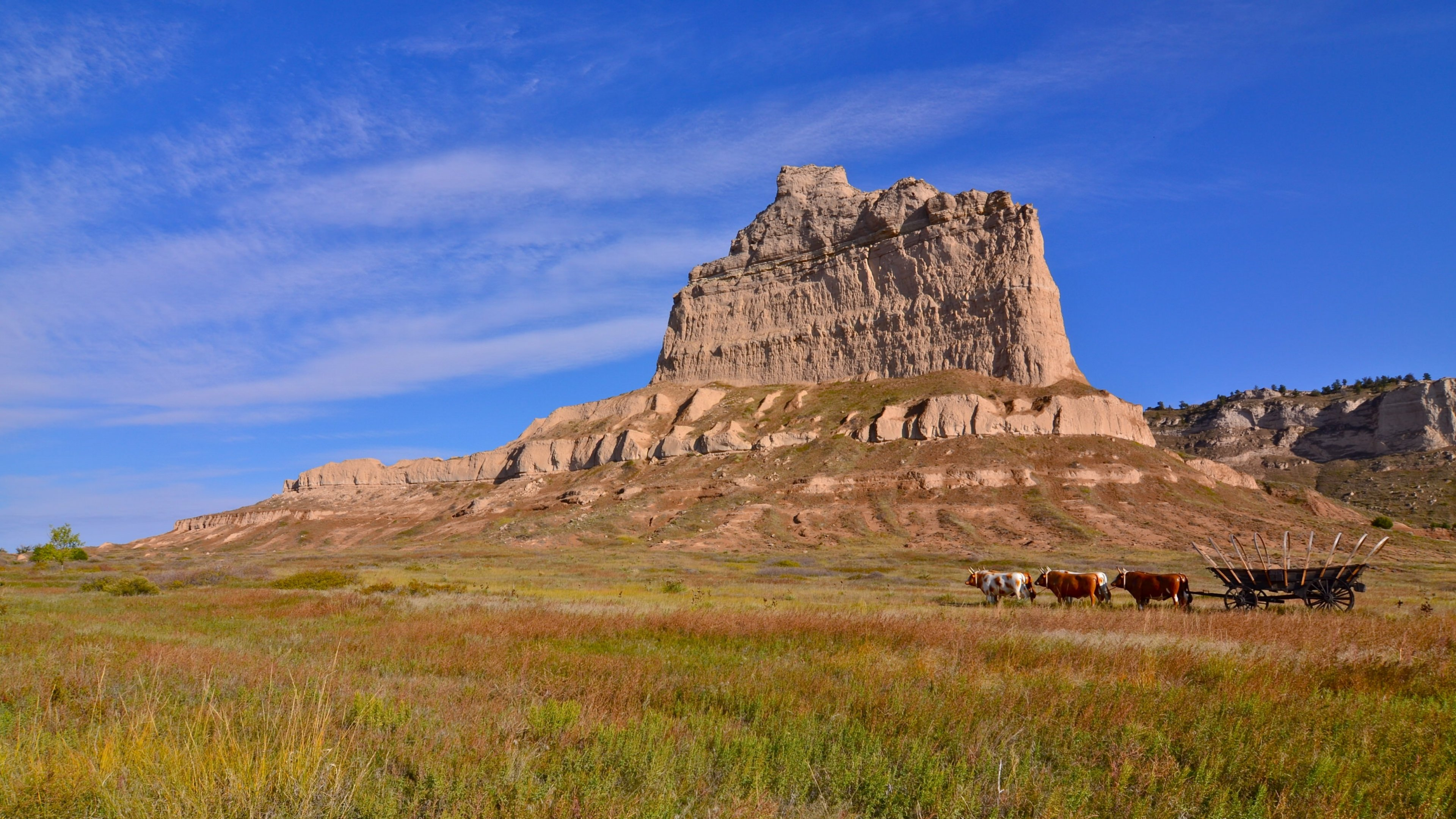 The sandstone fin of Scotts Bluff National Monument jutting out of a green prairie with an ox team pulling a wagon.