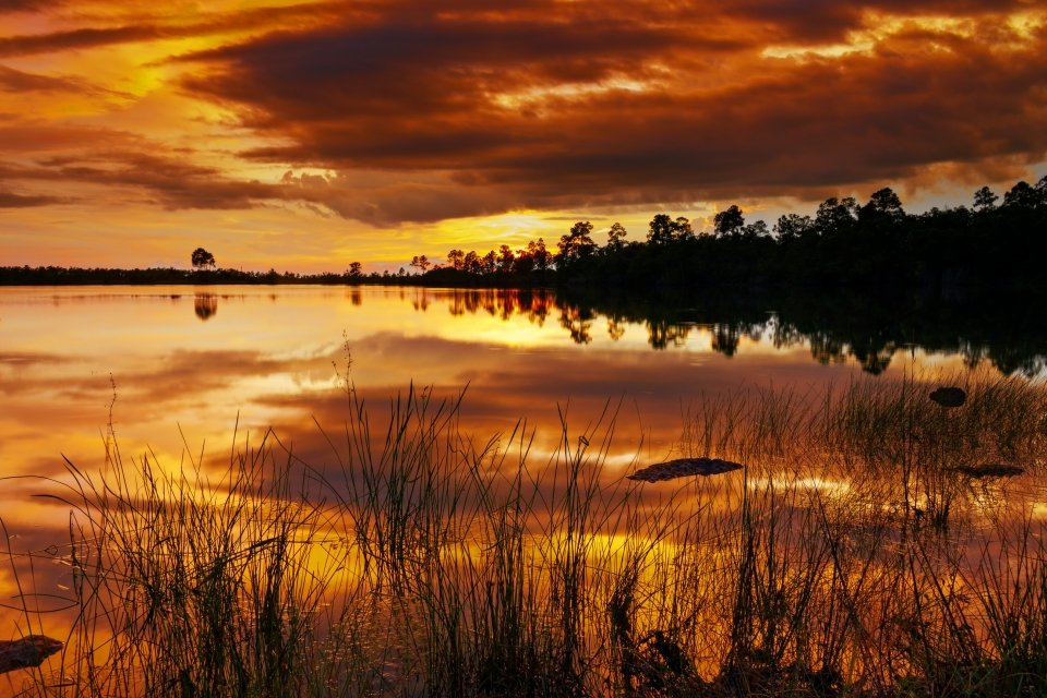 Sunset on the Florida everglades