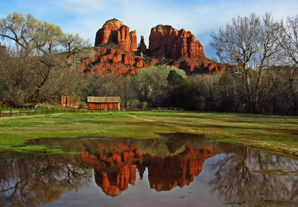 Red sandstone of Cathedral Rock reflected in water in a green field at Coconino National Forest