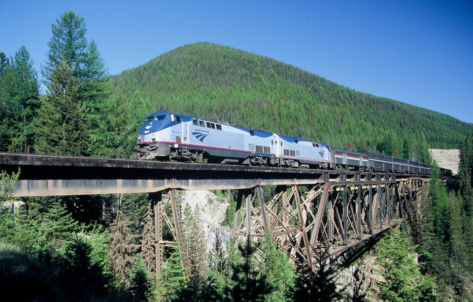 Amtrak train on a bridge going through a forest of evergreens