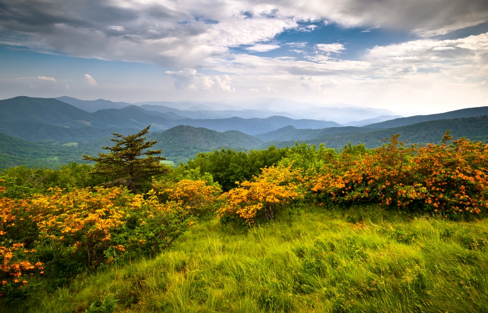 Green, grassy hills on the Appalachian National Scenic Trail