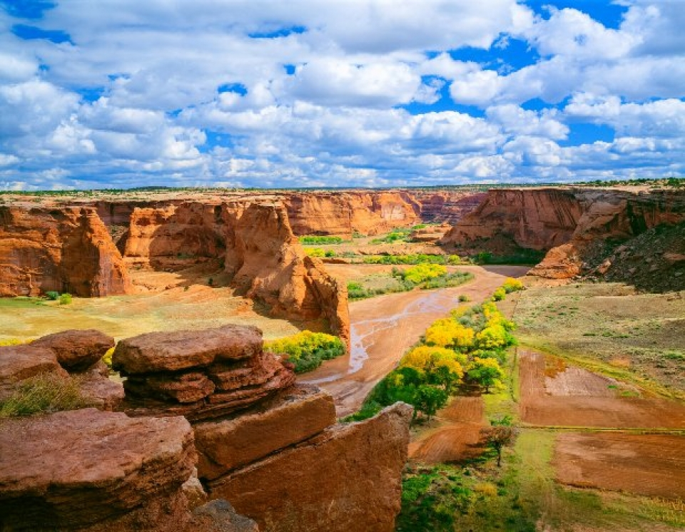 mesa verde national park single muslim girls Grand canyon university is a private christian university in phoenix, az offering bachelor's, master's and doctoral programs both online and on campus.