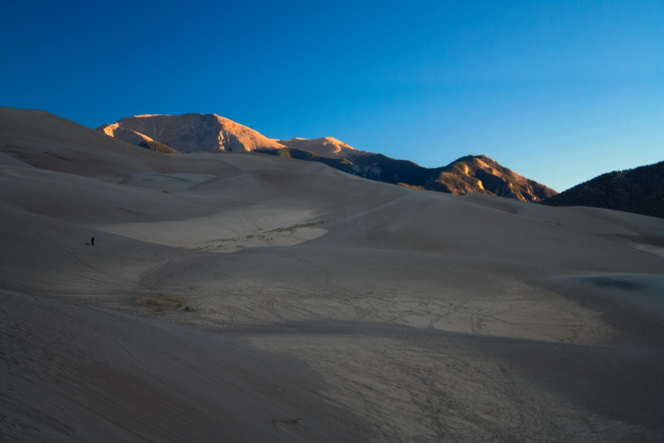 Sand Dunes in the Sunrise