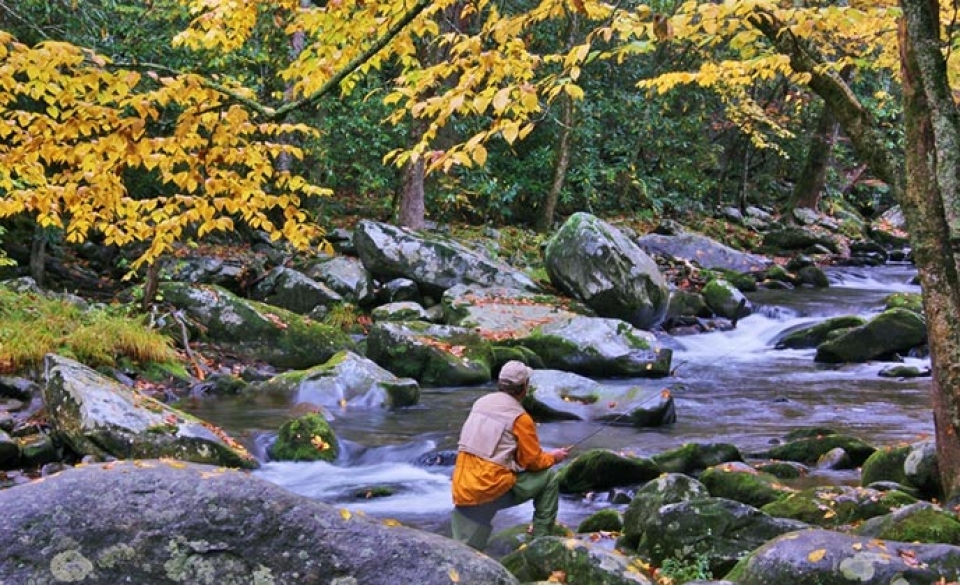 Man fishing in the Great Smoky Mountains