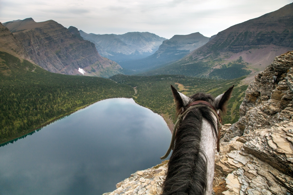 Horseback riding at Glacier National Park