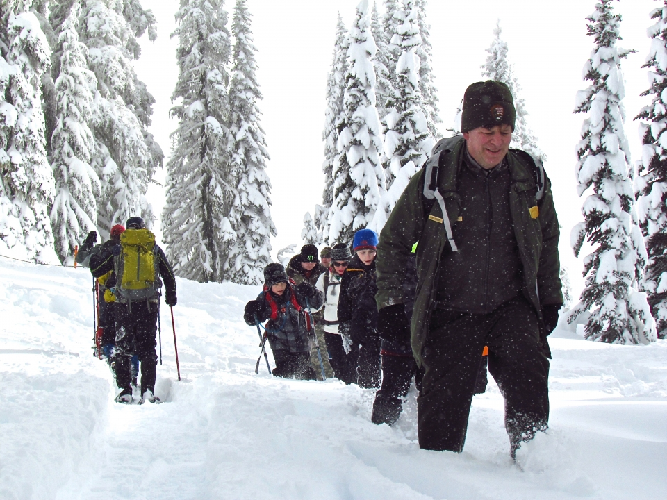 People snowshoeing in Mount Rainier National Park