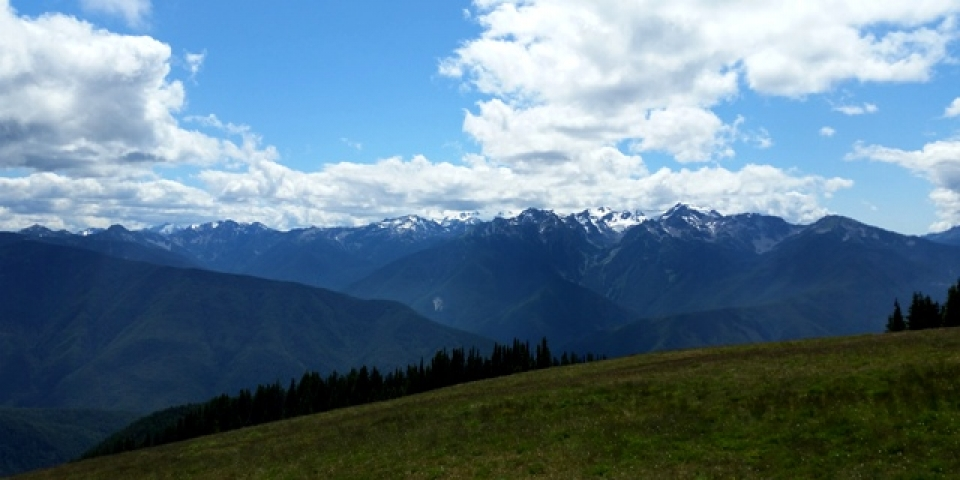 Snow-Topped Hurricane Ridge Mountain at Olympic National Park