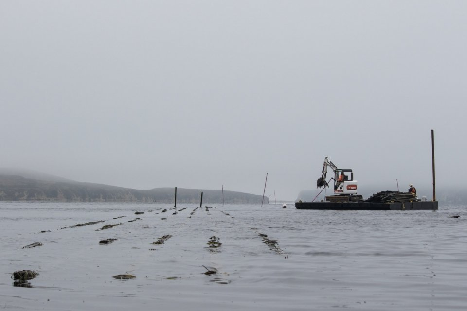 Machinery on dock picking debris out from Point Reyes Bay National Seashore