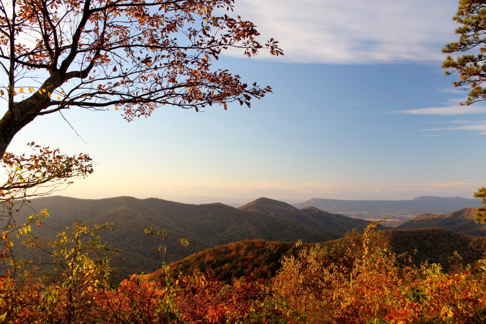 View of orange, green, and red mountains in Shenandoah National Park during autumn