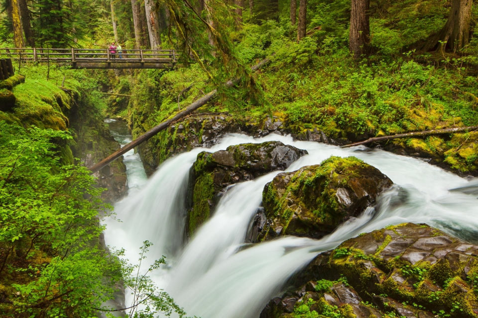 The overlook at Sol Duc Falls in Olympic National Park