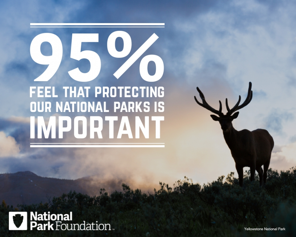 """95% feel that protecting our national parks is important"""