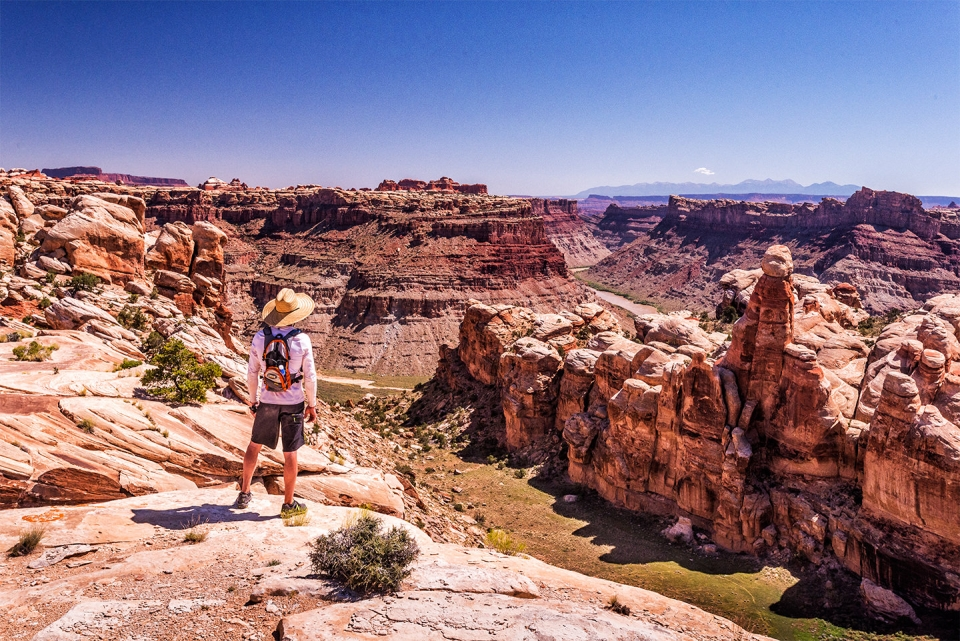 Panoramic view of sandstone cliffs from Dolls House at Canyonlands National Park