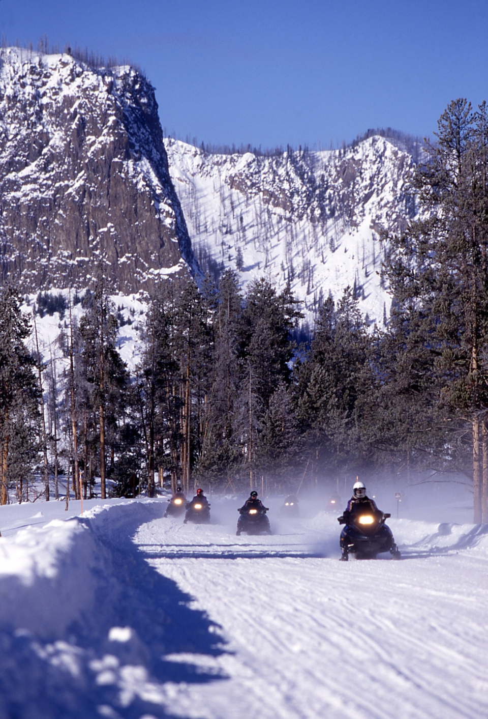 People snowmobiling at Yellowstone National Park