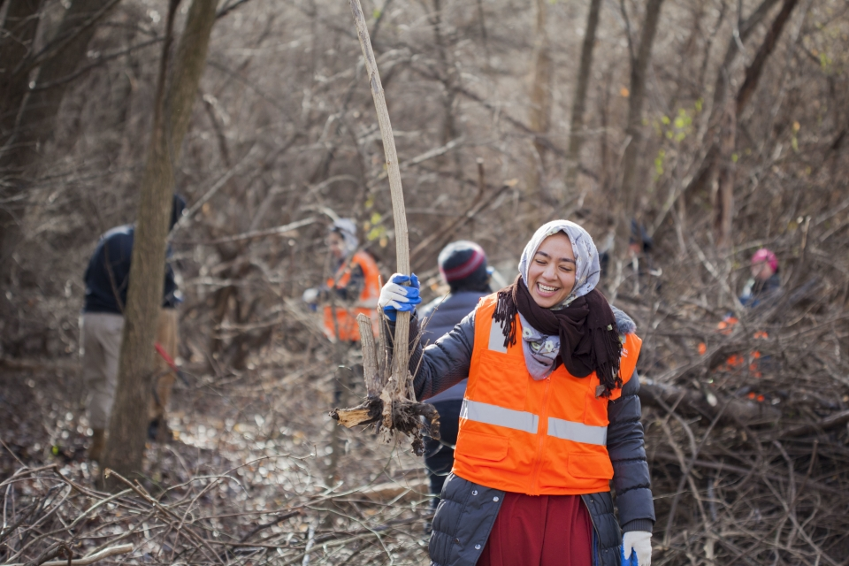 A volunteer wearing a safety vest holds up a large root that she's removed from the ground