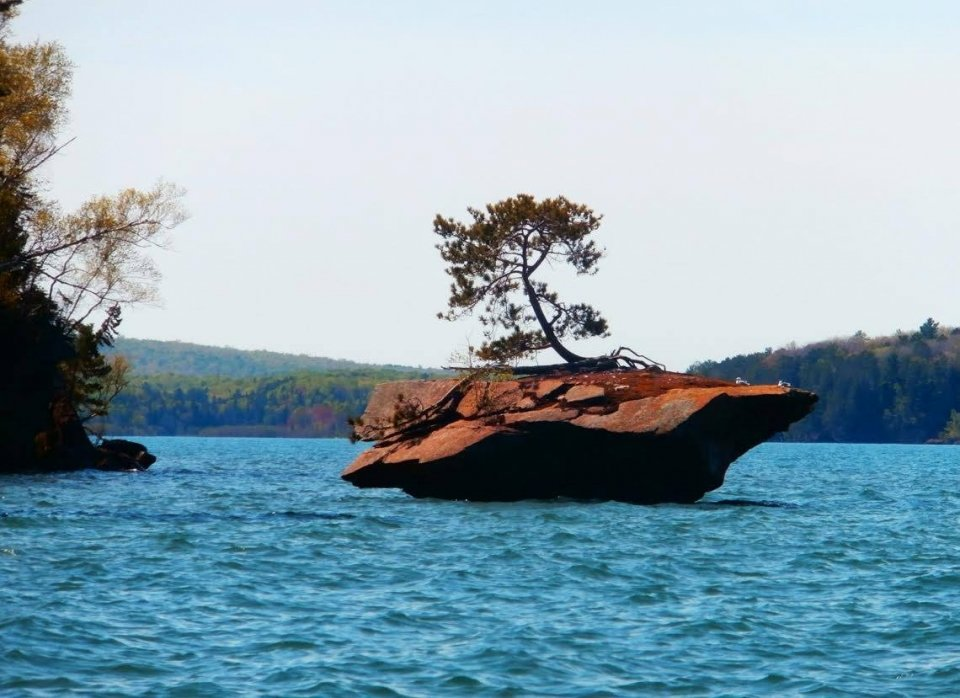 "A ""sea stack"" or a large rock protruding from a lake, with a tree growing on the top."