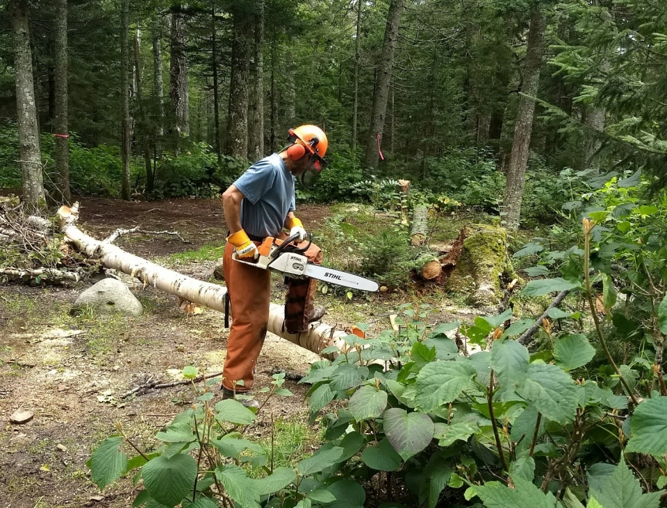 Volunteer clearing the Appalachian National Scenic Trail