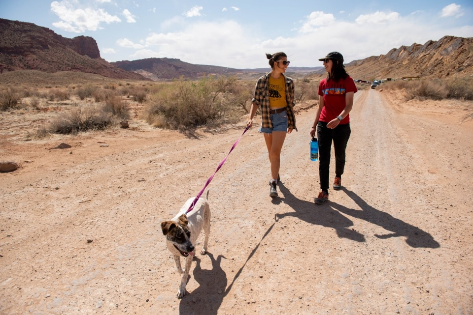 Two visitors go on a walk with a dog on a leash. One visitor holds a large waterbottle