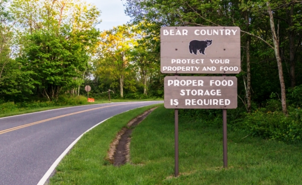 Sign mentioning bears in park