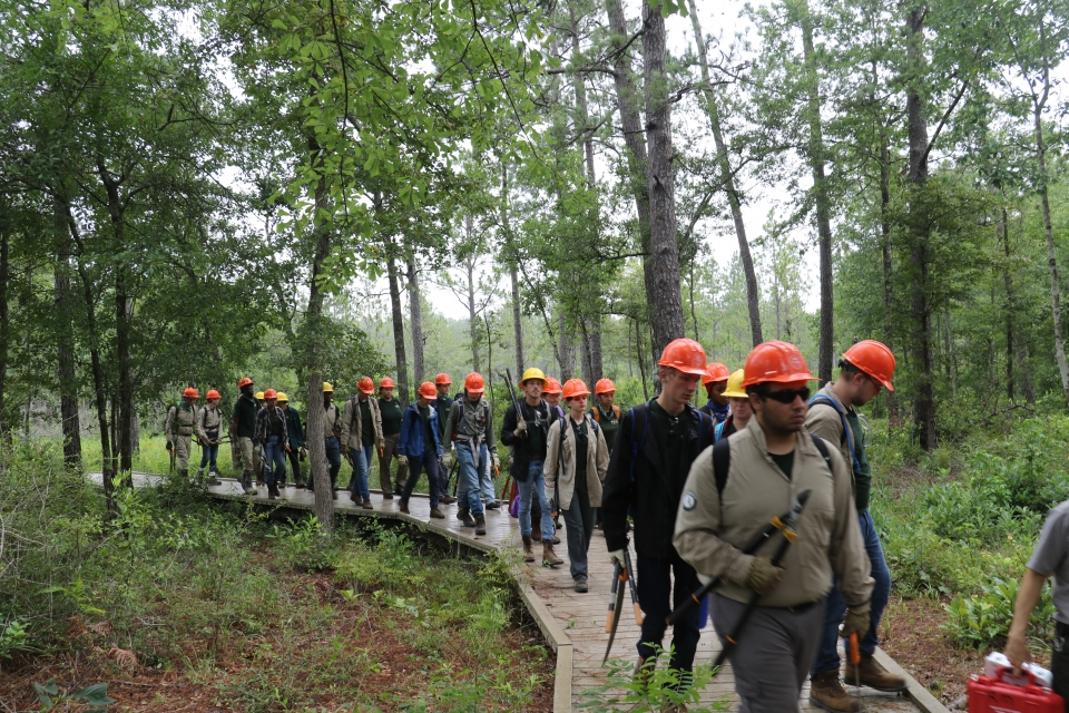 A group of young service corps members walk on an elevated wooden path through a densely forested trail, all with yellow and orange hardhats on.