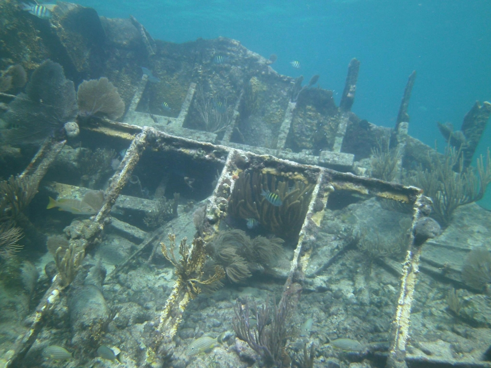 Remnants of the Mandalay shipwreck at Biscayne National Park