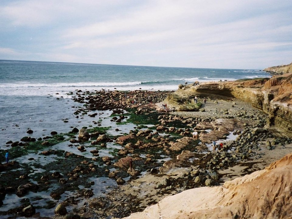 low tide on the Pacific Coast, near Cabrillo National Monument