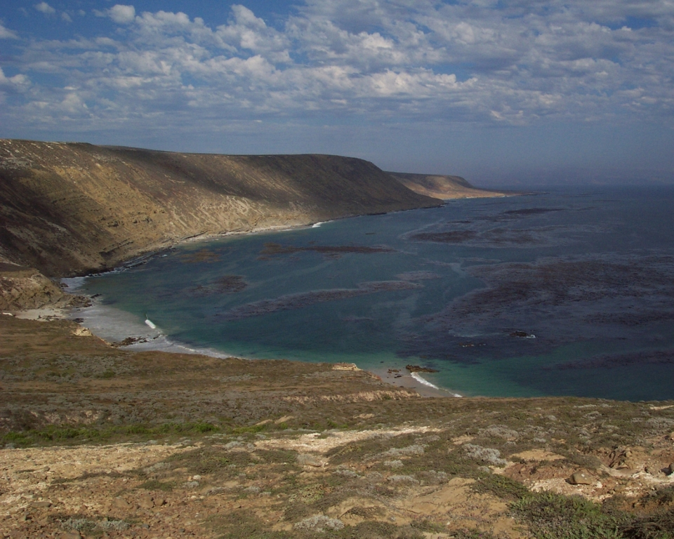Tyler Bight bay surrounded by cliffs on San Miguel Island at Channel Island National Park