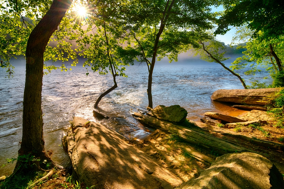 Sunlight beams in, filtered by airy green leaves, onto warm brown rocks along a misty blue river