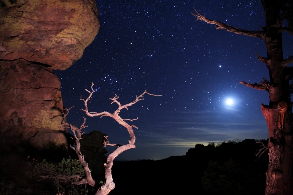 Past the trees and cliffs of Chiricahua National Monument, the moon shines white and bright alongside twinkling stars.
