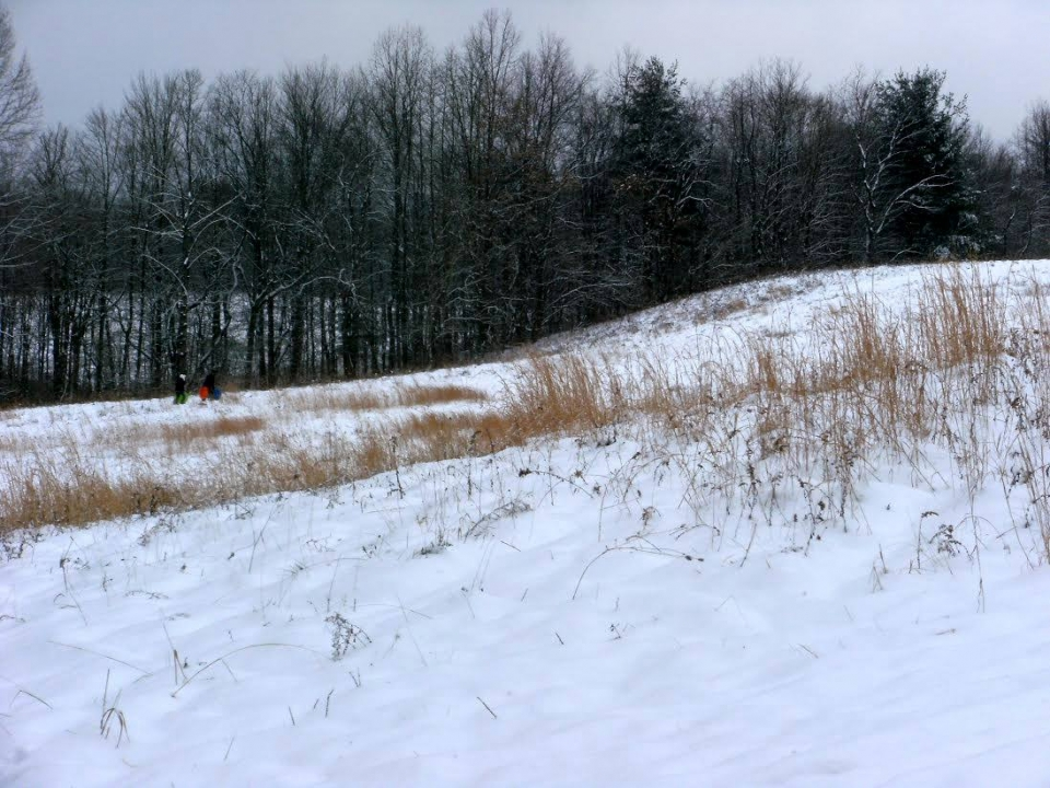 A snowy hill with a couple people in the distance walking up Kendall Hill with sleds in front of a row of bare trees at Cuyahoga Valley National Park
