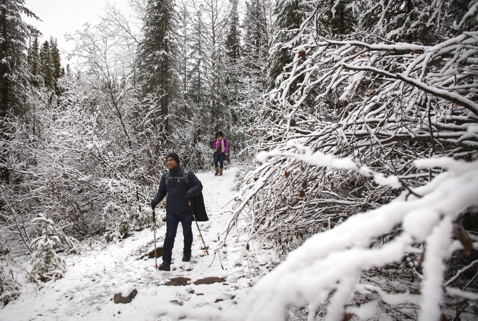 man and woman walking through a snowy forest